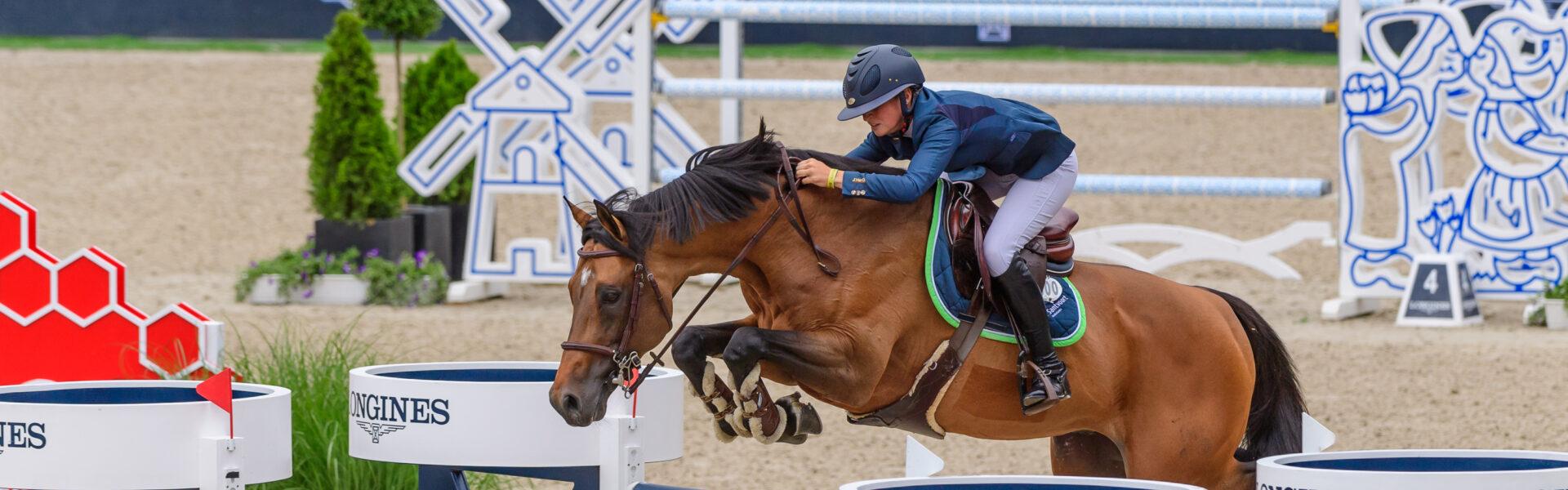 Alltech paard